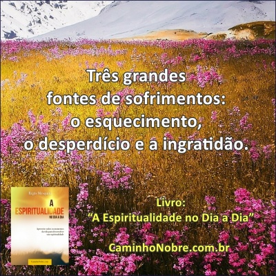 """Três grandes fontes de sofrimentos: o esquecimento, o desperdício e a ingratidão. Livro: """"A Espiritualidade no Dia a Dia"""""""